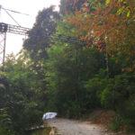 Casa Loma Legends of Horror 2019 Toronto Circus Rigging Installation