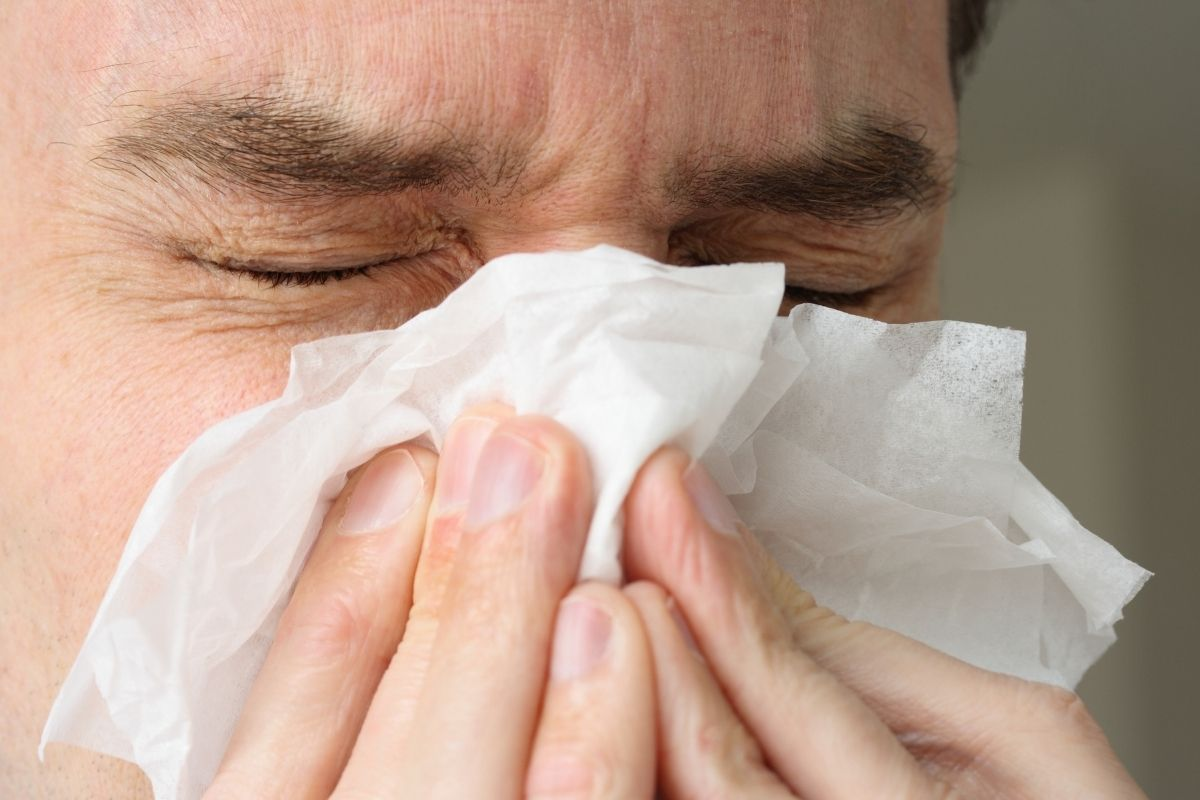 Quick Quiz: Is It Cold or Allergies?