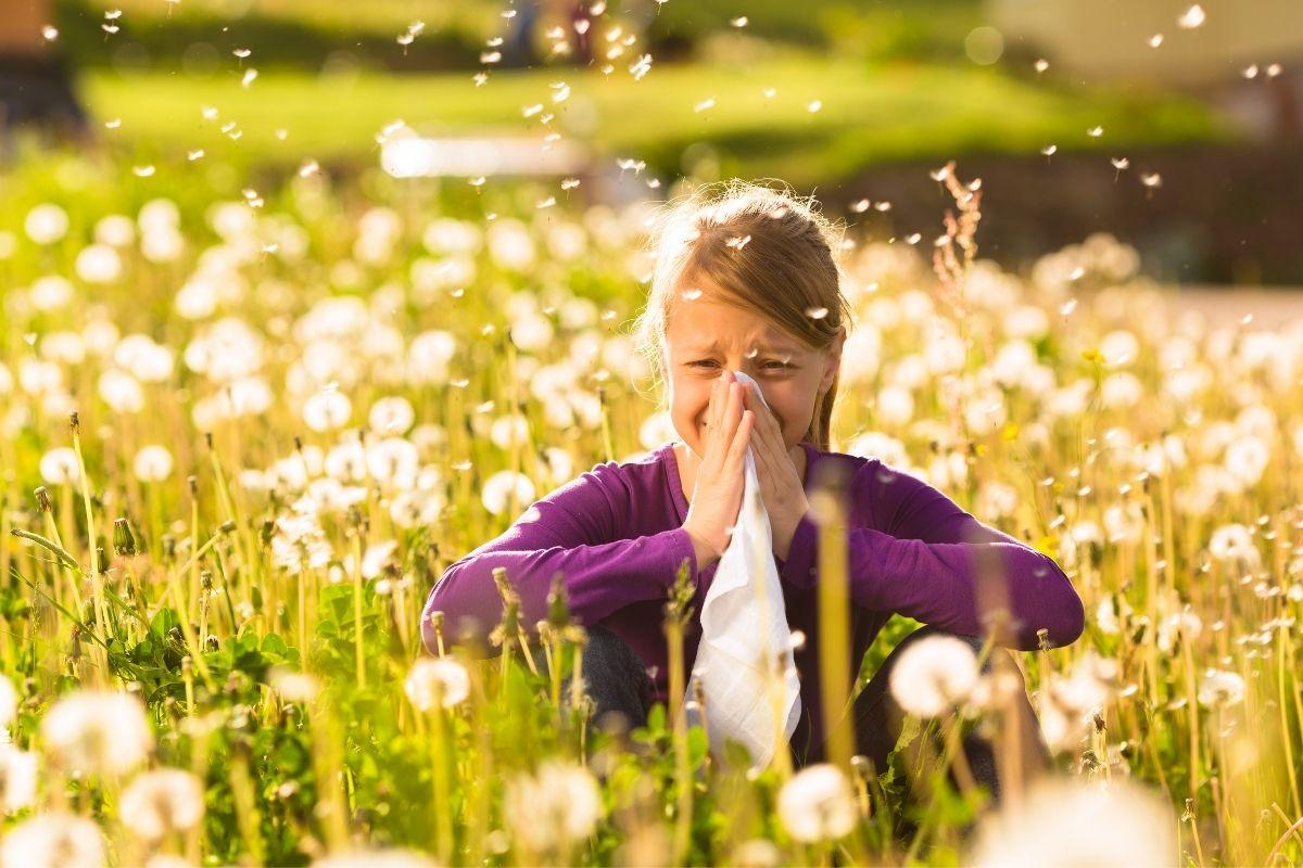 Allergies and The Immune System: What You Need to Know