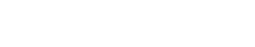 National Lease Advisors Logo