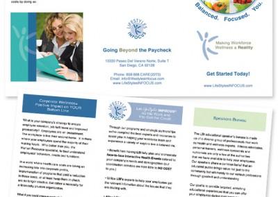 LSI Tri Fold Brochure