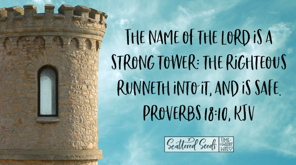 Daily Devotion - The Name of the Lord is a Strong Tower