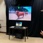Large Animal Handling in VR
