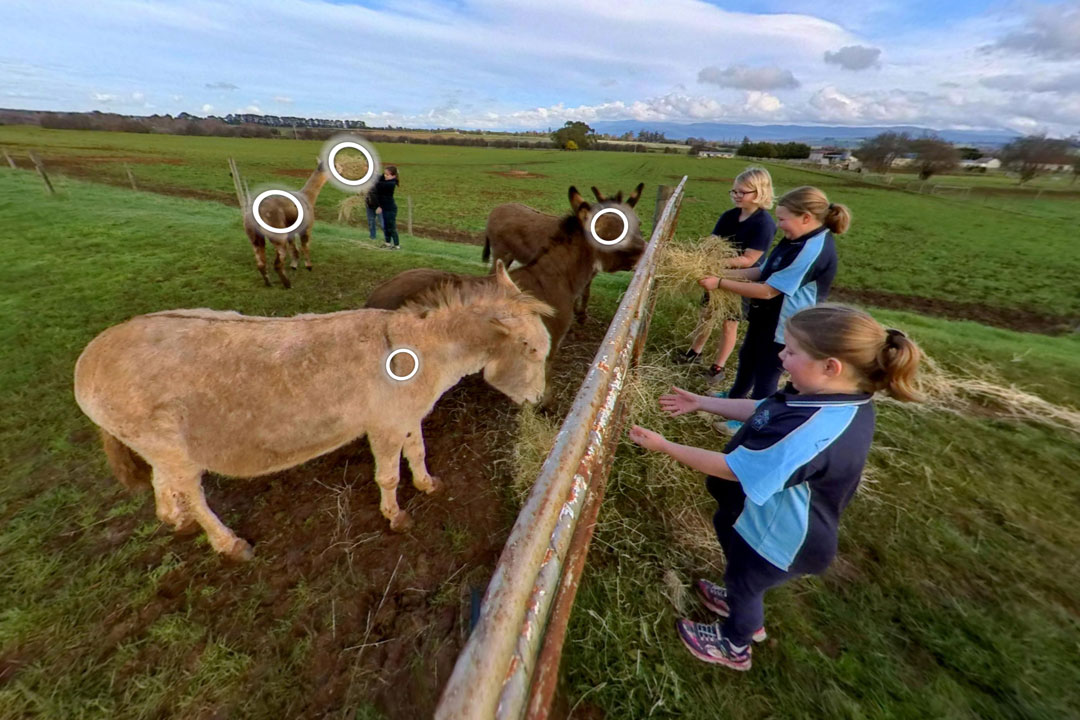 Farm virtual tours