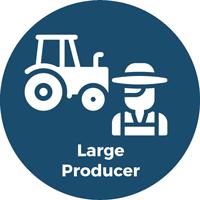 large producer
