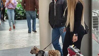 Mujer pasea  con su cachorro de tigre de bengala
