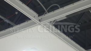 ceiling-tiles1