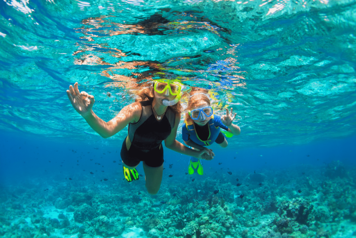 snorkeling, diving, scuba diving, charter, Sun Sports islamorada