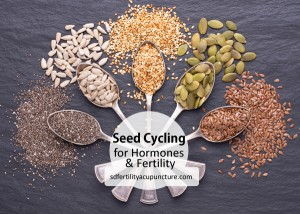 learn about seed cycling its benefits for women's hormonal balance and fertility