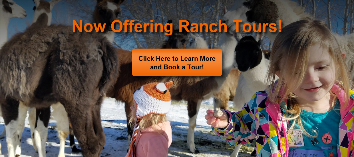 Book a Ranch Tour