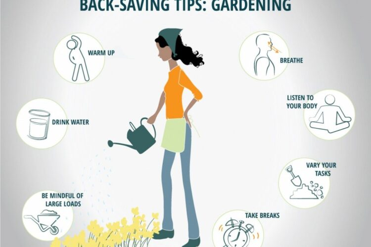 Tips for Keeping your Back Healthy While Gardenin