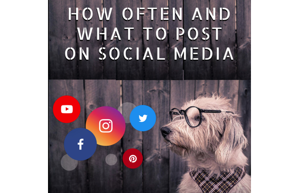 How Often And What To Post on Social Media