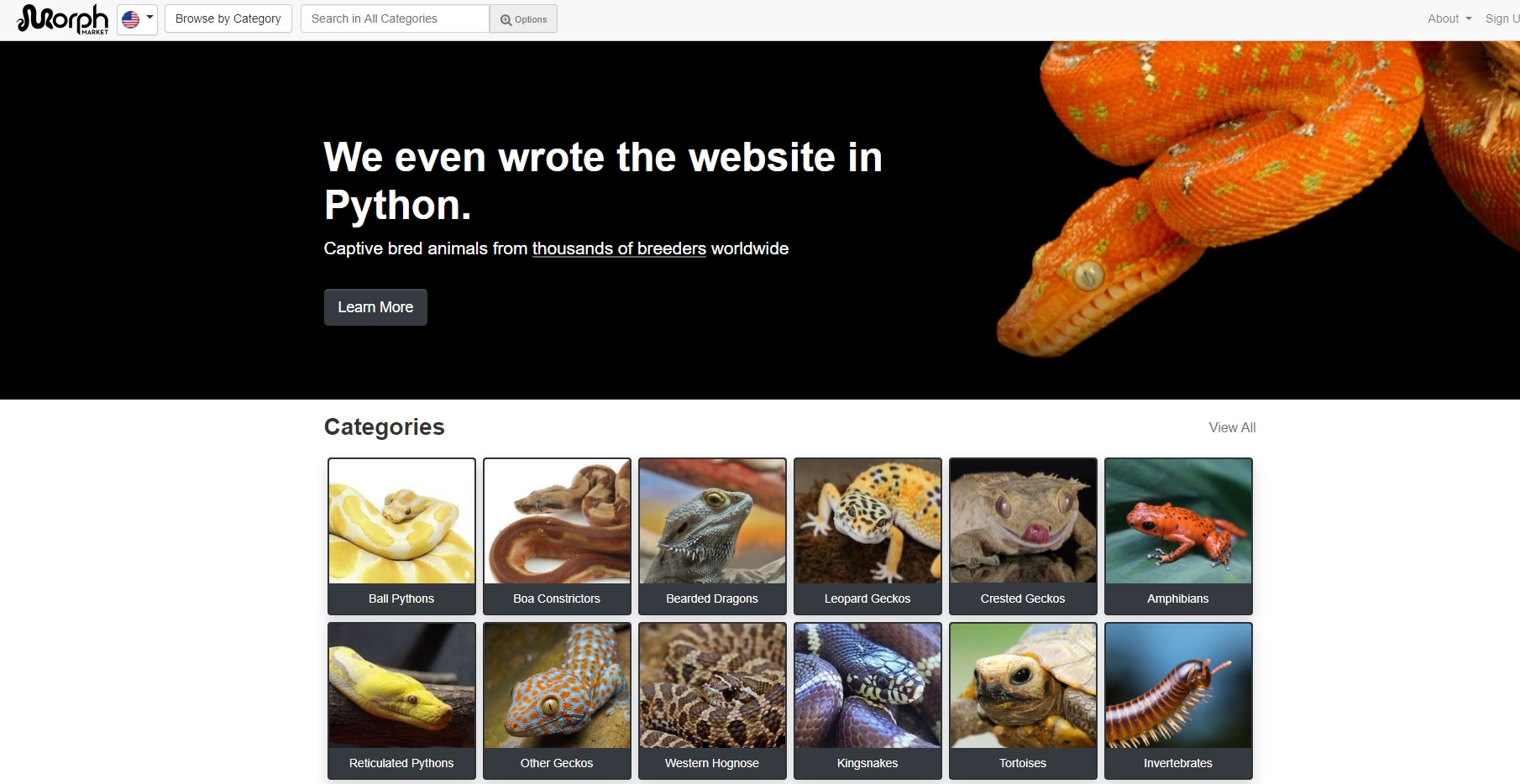 morph-market-reptile-website