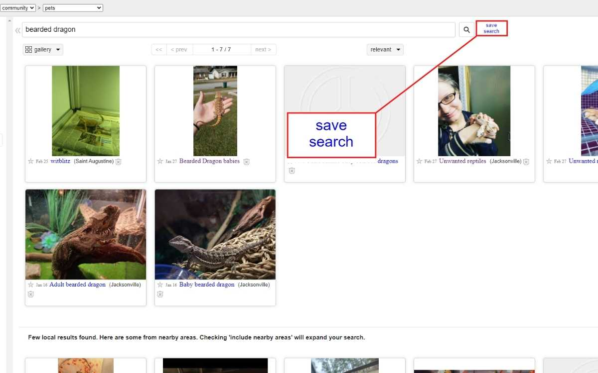 buying-a-bearded-dragon-from-craigslist