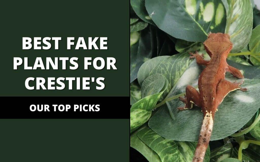 best fake plants for crested geckos