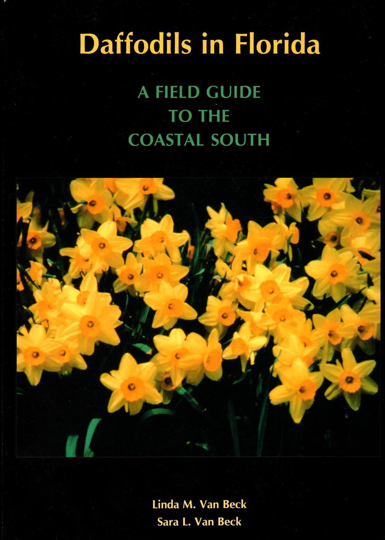 Daffodils-in-Florida