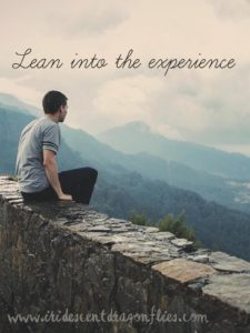 lean into the experience