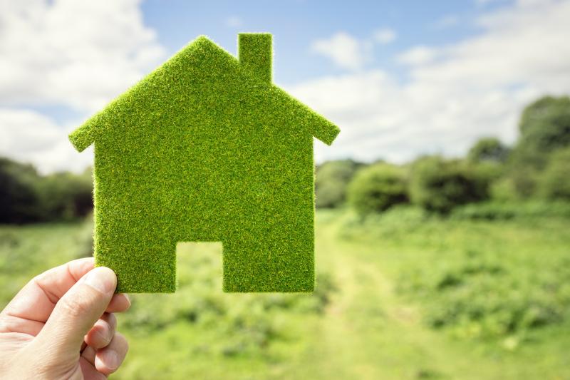 A Green House