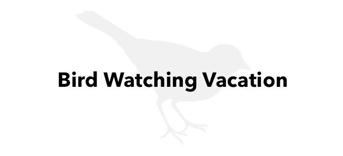 Bird Watching Vacation