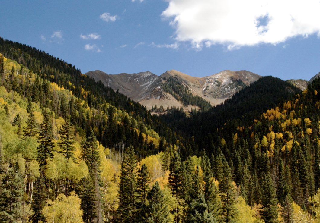La Plata Mountains in Fall