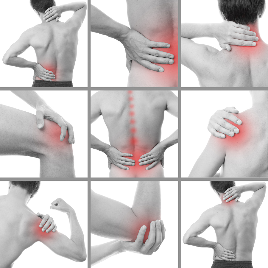 muscle strains, joint sprains, pain relief tampa, tampa chiropractic, top tampa chiropractor, best chiropractor wesley chapel, new tampa chiropractor, chiropractor tampa palms, chiropractor near usf