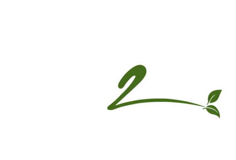 The K2 Life