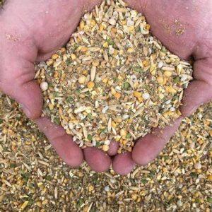 Buy Bulk Organic Layer Feed for Chickens Near Me, Littleton, Lewis & Cluck Fehringer Feeds