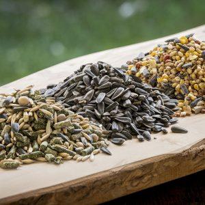 Feed, Seed, Grain, Fodder