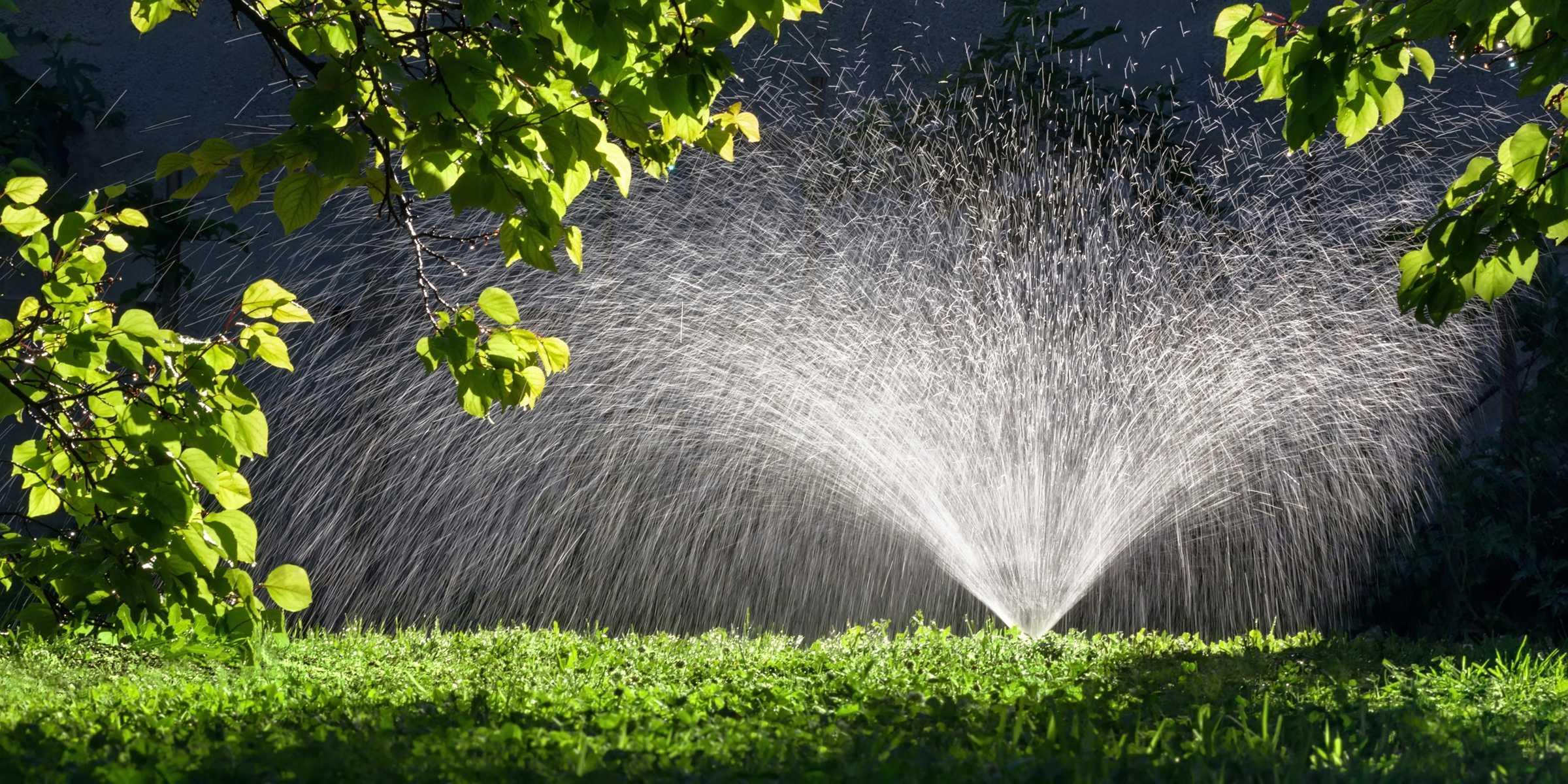 Why Irrigation Installation Shouldn't Be a DIY Job