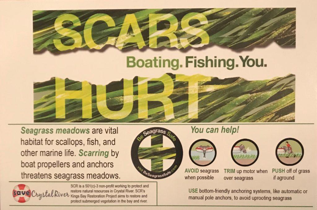 Prop Scars Hurt