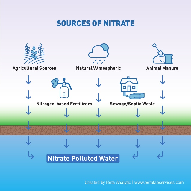 This image shows that nitrates naturally come from manure, sewage, fertilizers, farms, and the atmosphere.