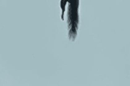 Falling Squirrel