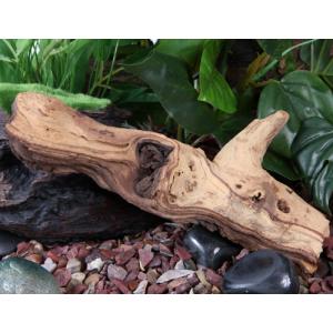 fluval mopani driftwood small beauty w h