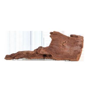 11821_fluval-malasian-driftwood-smallw300-h300