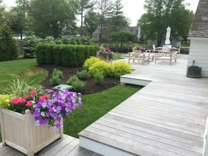 Patio with Lawn Installation