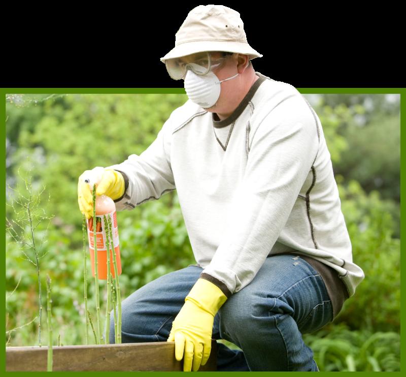 man using pesticide