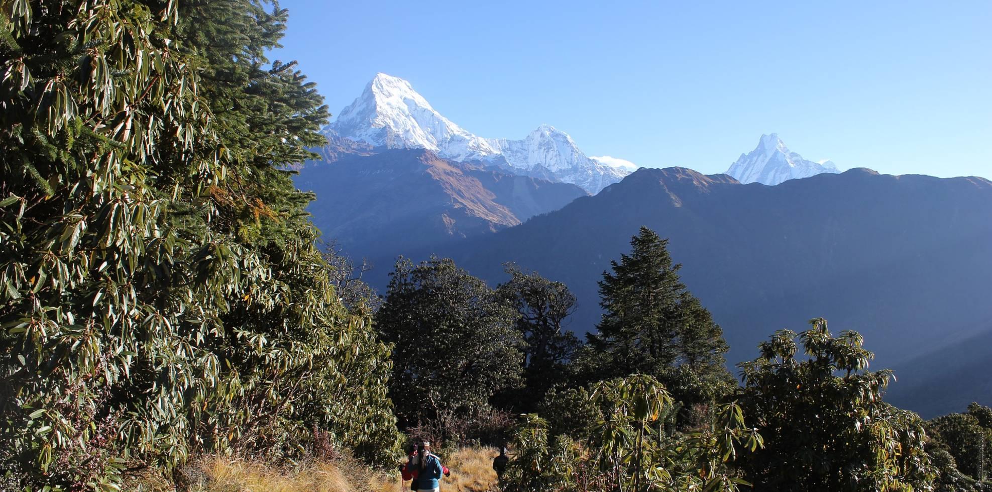 Cultural Tour and Trekking (Nepal, Tibet and Bhutan)