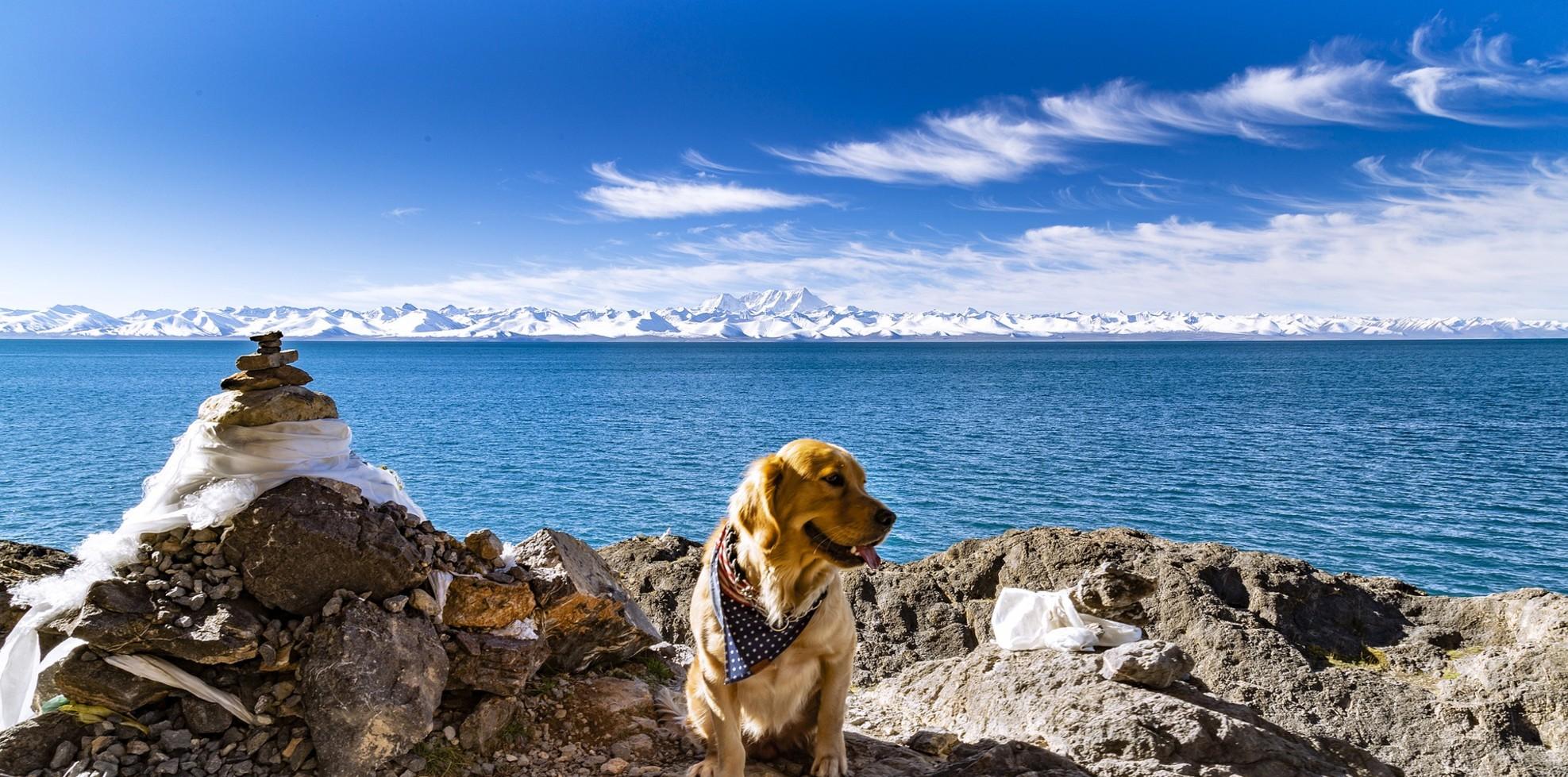 7 Days 6 Nights Lhasa Shigatse Namtso Tour
