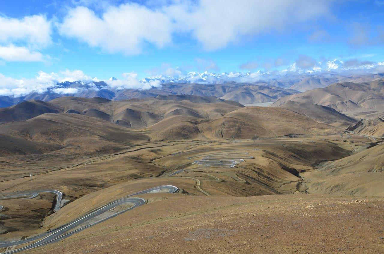 Tibetan Plauteu