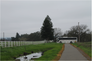 Tour bus crosses Joe Rodota trail from Hwy 12 into Dairyman property