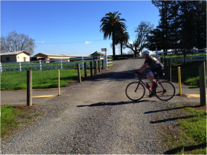 Nearly 700 bicyclists and pedestrians enjoy the Joe Rodota trail daily. Dairyman's driveway crosses the trail, which would create a safety hazard with trucks and cars continually crossing over from Highway 12.