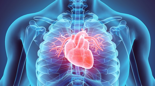 February AKA Heart Health Month