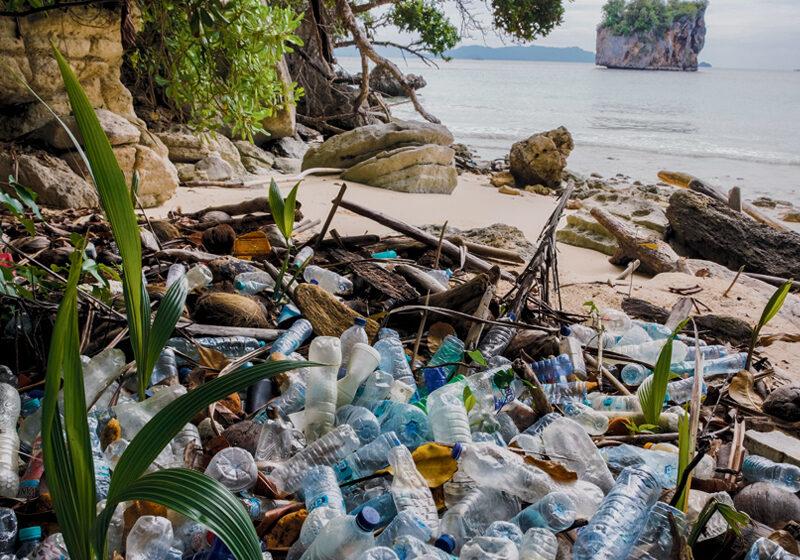 plastic bottle facts