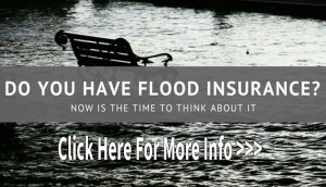 Flood Insurance, Homeowners Insurance, Windstorm Insurance, Business Insurance
