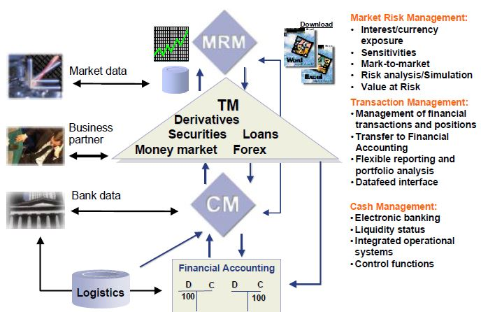 Treasury Process