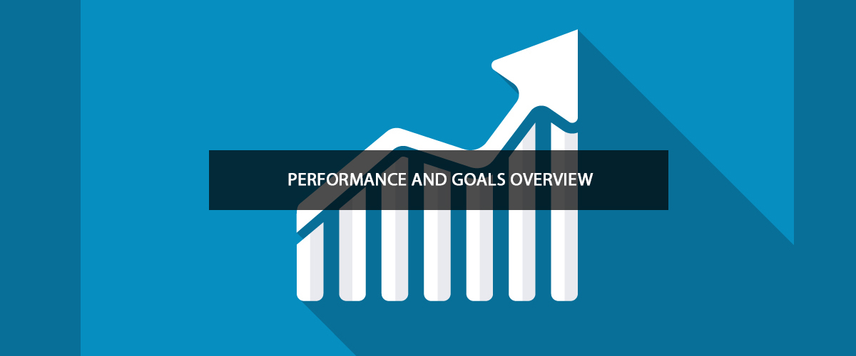 Performance and Goals Overview