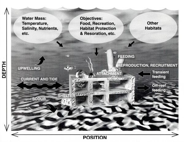 Illustrated diagram