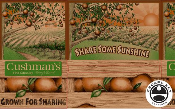Package Design for Oranges