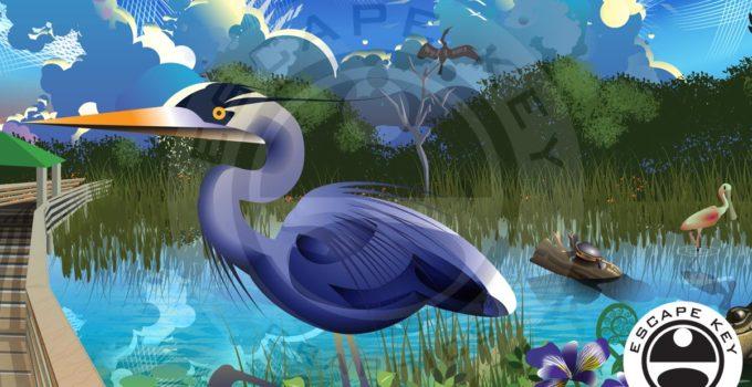 Wetlands Illustration