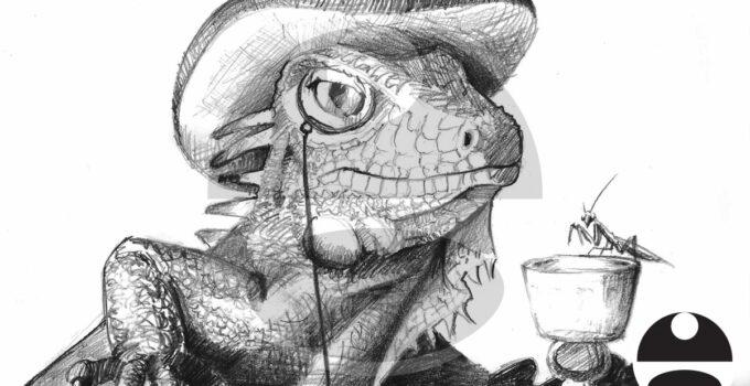 Iguana Drawing - Illustration